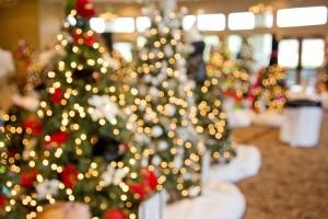christmas-trees-1042542_640